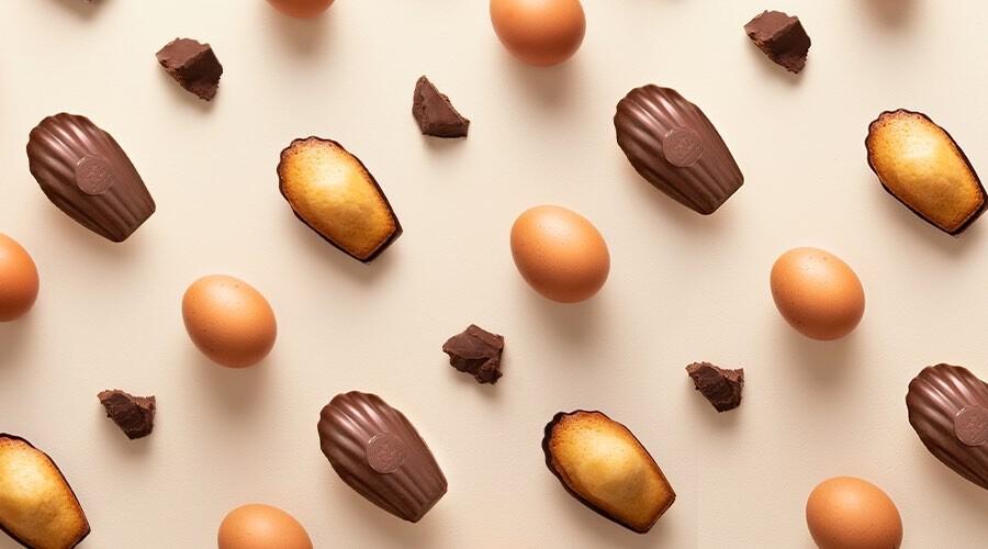 Madeleines, carrés de chocolat et œufs placés en ligne sur un fond clair
